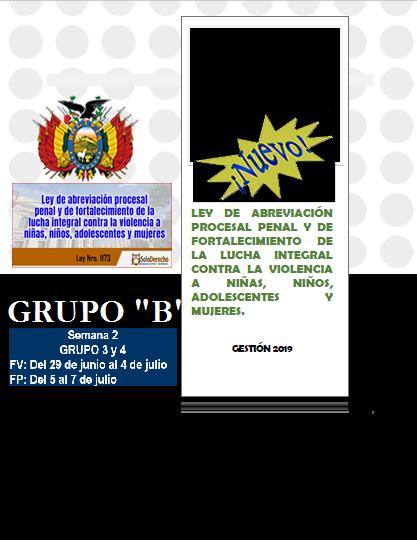 """TALLERES DEPARTAMENTALES  LEY DE ABREVIACIÓN PROCESAL PENAL Y DE FORTALECIMIENTO DE LA LUCHA INTEGRAL CONTRA LA VIOLENCIA A NIÑAS, NIÑOS, ADOLESCENTES Y MUJERES  – LEY N° 1173 - GRUPO """"B"""""""