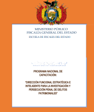 DIRECCIÓN FUNCIONAL ESTRATÉGICA E INTELIGENTE PARA LA INVESTIGACIÓN Y PERSECUCIÓN PENAL DE DELITOS PATRIMONIALES