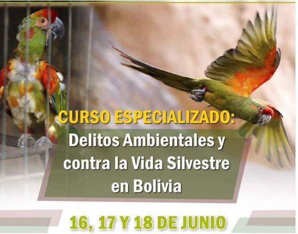 CURSO ESPECIALIZADO EN DELITOS AMBIENTALES Y CONTRA LA VIDA SILVESTRE EN BOLIVIA